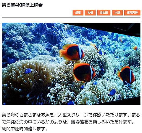 Sony-Aquarium-04.jpg