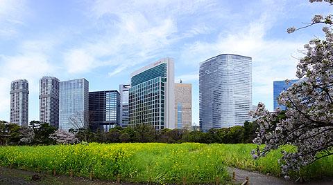 panorama01.jpg